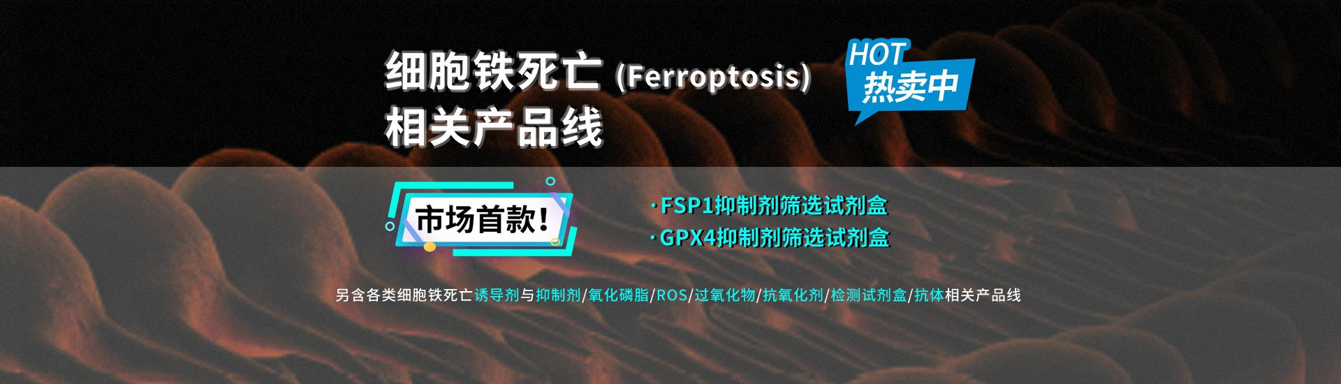 细胞铁死亡(Ferroptosis)相关产品线热卖中